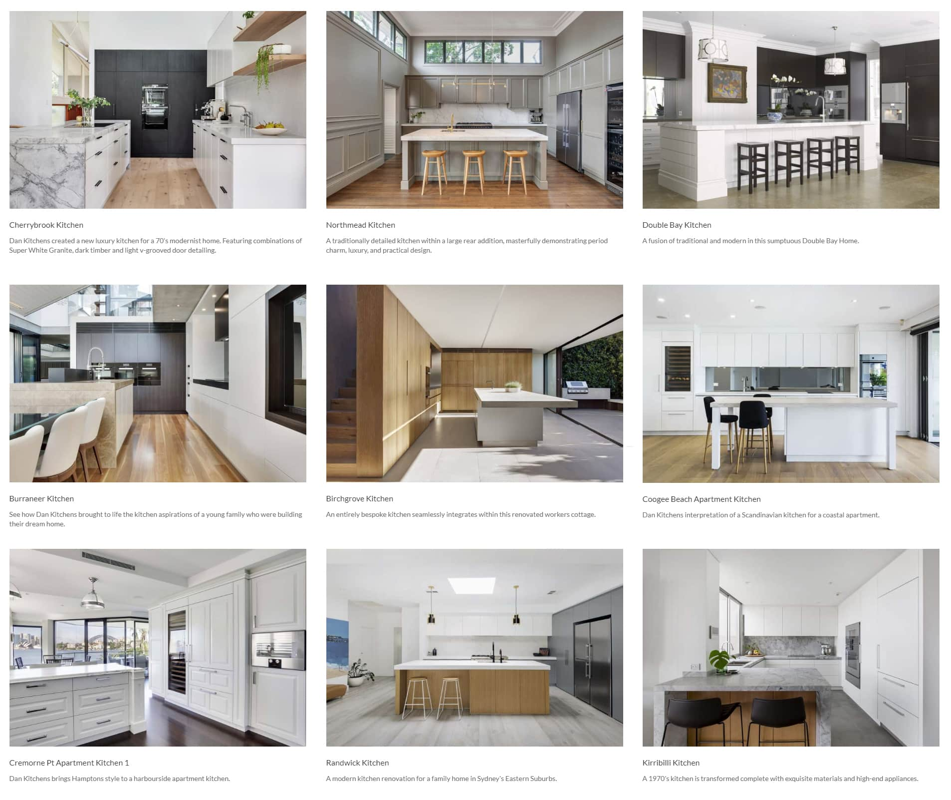 Dan Kitchens Project Examples